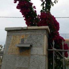 Отель Vila Ester Албания, Ксамил - отзывы, цены и фото номеров - забронировать отель Vila Ester онлайн помещение для мероприятий