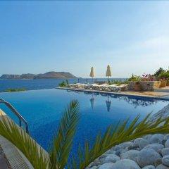 Villa La Moda Турция, Патара - отзывы, цены и фото номеров - забронировать отель Villa La Moda онлайн бассейн фото 2
