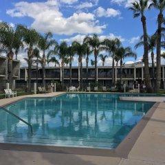 Отель Valley Inn США, Лос-Анджелес - отзывы, цены и фото номеров - забронировать отель Valley Inn онлайн бассейн