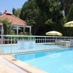 Отель Safak Beach Motel детские мероприятия
