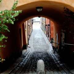 Отель Sheraton Stockholm Hotel Швеция, Стокгольм - 2 отзыва об отеле, цены и фото номеров - забронировать отель Sheraton Stockholm Hotel онлайн фото 2