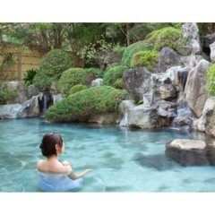Ureshino Onsen Family Hotel Shinsenkaku Кашима бассейн фото 3