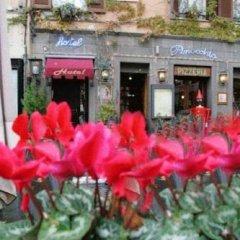 Отель Pinocchio Италия, Фраскати - отзывы, цены и фото номеров - забронировать отель Pinocchio онлайн фото 3
