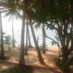 Отель Ypsylon Tourist Resort Шри-Ланка, Берувела - отзывы, цены и фото номеров - забронировать отель Ypsylon Tourist Resort онлайн приотельная территория фото 2