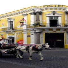 Отель Hostel Hospedarte Centro Мексика, Гвадалахара - отзывы, цены и фото номеров - забронировать отель Hostel Hospedarte Centro онлайн фото 8