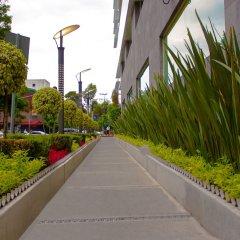Отель NOVIT Мехико фото 2