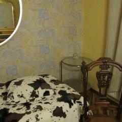 Гостиница Антик Рахманинов в Санкт-Петербурге - забронировать гостиницу Антик Рахманинов, цены и фото номеров Санкт-Петербург удобства в номере