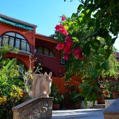 Отель Boutique Casa Bella Мексика, Кабо-Сан-Лукас - отзывы, цены и фото номеров - забронировать отель Boutique Casa Bella онлайн фото 5