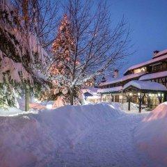 Отель Tanne Болгария, Банско - отзывы, цены и фото номеров - забронировать отель Tanne онлайн фото 11