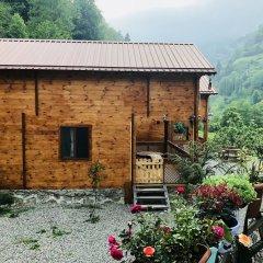 Tanura Bungalows Турция, Чамлыхемшин - отзывы, цены и фото номеров - забронировать отель Tanura Bungalows онлайн фото 13