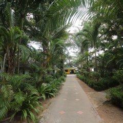 Отель Lanta Island Resort фото 9
