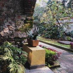 Отель Suites Los Camilos - Adults Only Мексика, Мехико - отзывы, цены и фото номеров - забронировать отель Suites Los Camilos - Adults Only онлайн фото 2