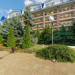Гостиница Надежда в Анапе отзывы, цены и фото номеров - забронировать гостиницу Надежда онлайн Анапа фото 2