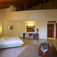 Parnis Palace Hotel Suites комната для гостей фото 2