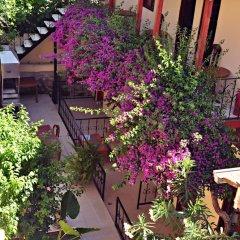 Sevil Hotel Турция, Сиде - отзывы, цены и фото номеров - забронировать отель Sevil Hotel онлайн фото 5