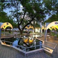 Каравелла отель детские мероприятия фото 2