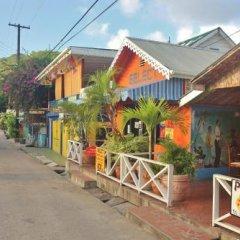 Отель Tropical Hideaway фото 9