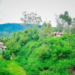 Отель Forest View Cottage Шри-Ланка, Нувара-Элия - отзывы, цены и фото номеров - забронировать отель Forest View Cottage онлайн фото 4