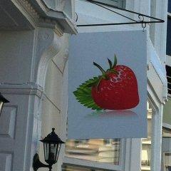 Отель Strawberry Fields Великобритания, Кемптаун - отзывы, цены и фото номеров - забронировать отель Strawberry Fields онлайн интерьер отеля фото 2