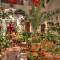 Отель Rincon de las Nieves фото 7