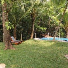 Отель Sethra Villas Шри-Ланка, Бентота - отзывы, цены и фото номеров - забронировать отель Sethra Villas онлайн бассейн фото 2