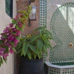 Отель Riad Dar Guennoun Марокко, Фес - отзывы, цены и фото номеров - забронировать отель Riad Dar Guennoun онлайн фото 3