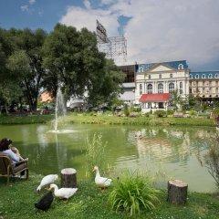 Спа Отель Внуково фото 3