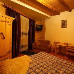 Семейный отель Горный Прутец удобства в номере фото 2
