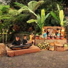 Padma Hotel Bandung бассейн фото 3