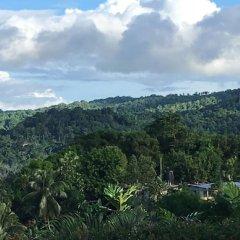 Отель Treetops Villa Порт Антонио фото 4
