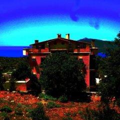 Apart Villa Asoa Kalkan Турция, Патара - отзывы, цены и фото номеров - забронировать отель Apart Villa Asoa Kalkan онлайн фото 16