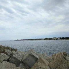 Отель Elsi Sea House Болгария, Несебр - отзывы, цены и фото номеров - забронировать отель Elsi Sea House онлайн приотельная территория фото 2