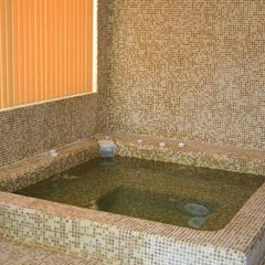 Отель Prespa Bansko - Guest House бассейн