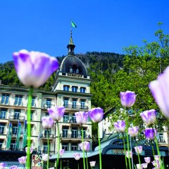 VICTORIA-JUNGFRAU Grand Hotel & Spa фото 8