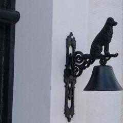 Отель The Doghouse интерьер отеля