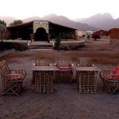 Отель Sahara Beach Camp фото 6