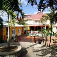 Отель Coco Palm фото 19