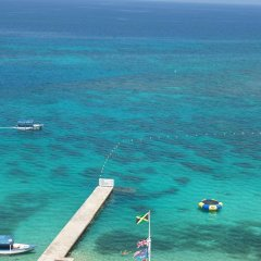 Отель Daydream Beach at Montego Bay Club Ямайка, Монтего-Бей - отзывы, цены и фото номеров - забронировать отель Daydream Beach at Montego Bay Club онлайн приотельная территория