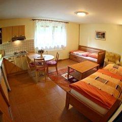 Отель Pension KrÁl Яблонец-над-Нисой комната для гостей фото 4