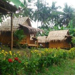 Отель Sea view Panwa Cottage Hostel Таиланд, пляж Панва - отзывы, цены и фото номеров - забронировать отель Sea view Panwa Cottage Hostel онлайн фото 23