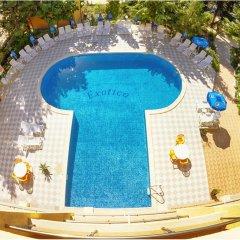 Hotel Exotica бассейн фото 3