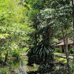 Отель Sigiriya Village фото 11