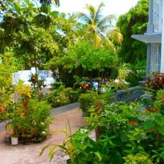 Отель Palm View Guesthouse And Conference Centre Монтего-Бей