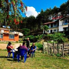 Отель Mount Paradise Непал, Нагаркот - отзывы, цены и фото номеров - забронировать отель Mount Paradise онлайн приотельная территория фото 2