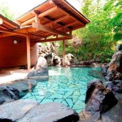 Отель Shiki no Sato Hanamura Япония, Минамиогуни - отзывы, цены и фото номеров - забронировать отель Shiki no Sato Hanamura онлайн бассейн фото 2
