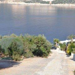 Villa Basil Турция, Патара - отзывы, цены и фото номеров - забронировать отель Villa Basil онлайн приотельная территория