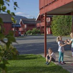 Апартаменты Birkebeineren Apartments с домашними животными