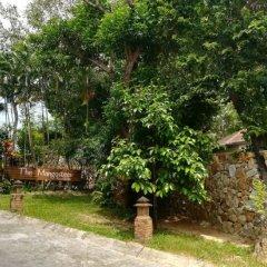 Отель Mangosteen Ayurveda & Wellness Resort фото 5