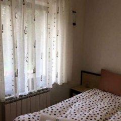 Family Hotel Ginger 2* Стандартный номер с различными типами кроватей фото 4