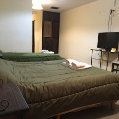 Hotel Puesta del Sol Сан-Рафаэль удобства в номере